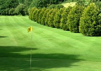Cwmrhydneuadd Golf Club