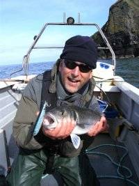 Sea Bass Safaris